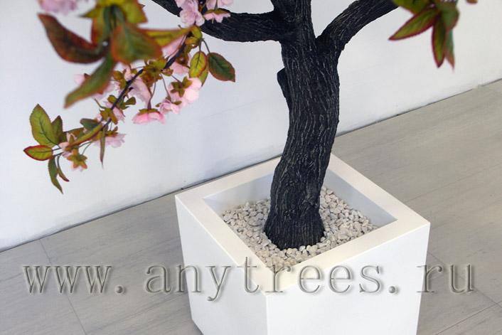 взять в аренду дерево сакура